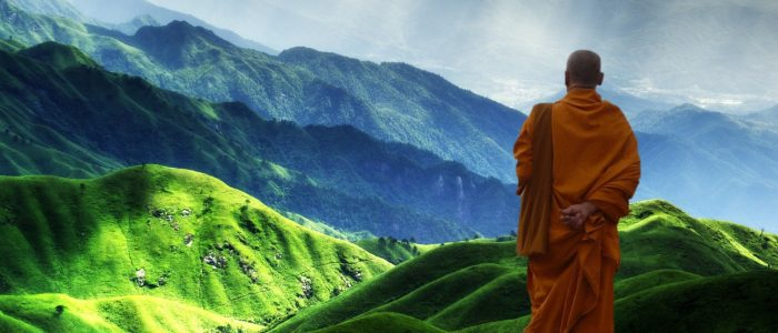 Himalayas Darjeeling Tea