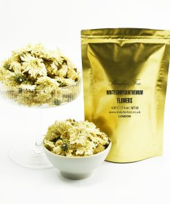 Mayfair Tea White Chrysanthemum